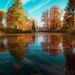 Quelques inspirations pour photographier l'automne