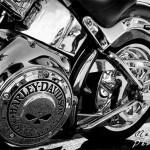 Vive la moto !