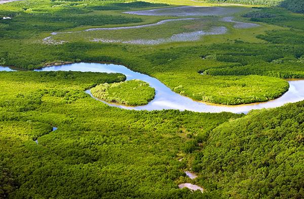 Vue aérienne de terres humides côtières luxuriantes. © sfmthd – Fotolia.com