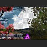 TUTO // Réalisez des détourages complexes dans Affinity Photo